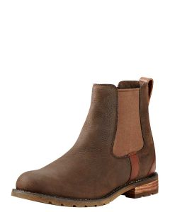 Women's Ariat Wexford Chelsea Boot in Java